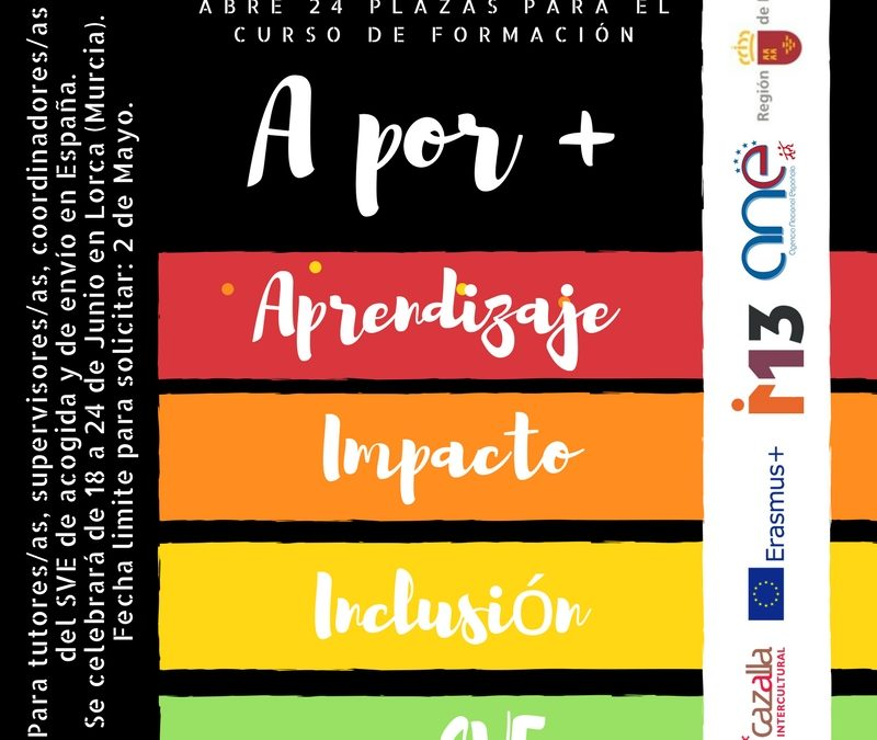 """Curso """"A por + aprendizaje, Impacto, Inclusión en SVE"""""""